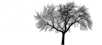 Survival Tree